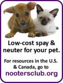 nooters-low-cost-spay-neuter